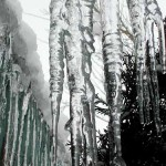 distilled water makes great icicles