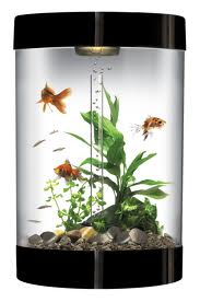 using distilled water in your fish tank