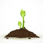 Realistic Green Sprouting Seeds | Image credit: Vector Open Stock